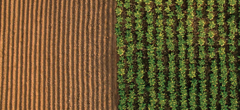 smarter-agriculture-bg